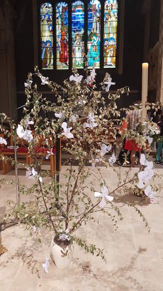 arbrecolombepaix