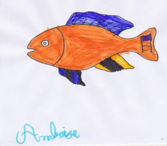 poisson ambroise